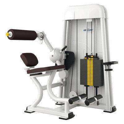 Ergo-Fit Back Extension 4000, medical