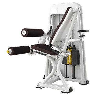 Ergo-Fit Leg Flexion 4000, medical