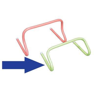 Träningshäck i bockat PVC-rör