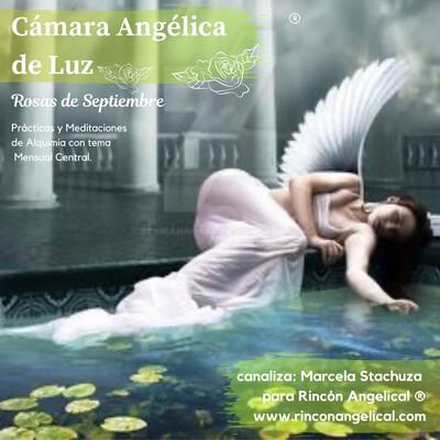 Cámara Angélica  con Arcángel Metatrón- Precio Anclaje