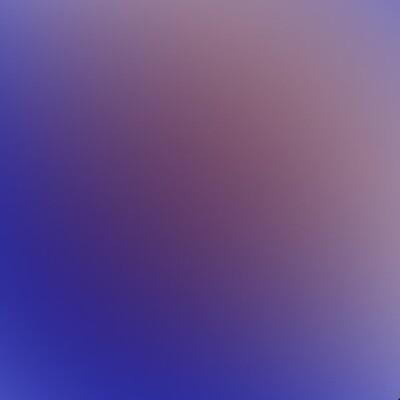 Blue  Chameleon HTV