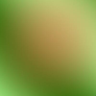 Green  Chameleon HTV