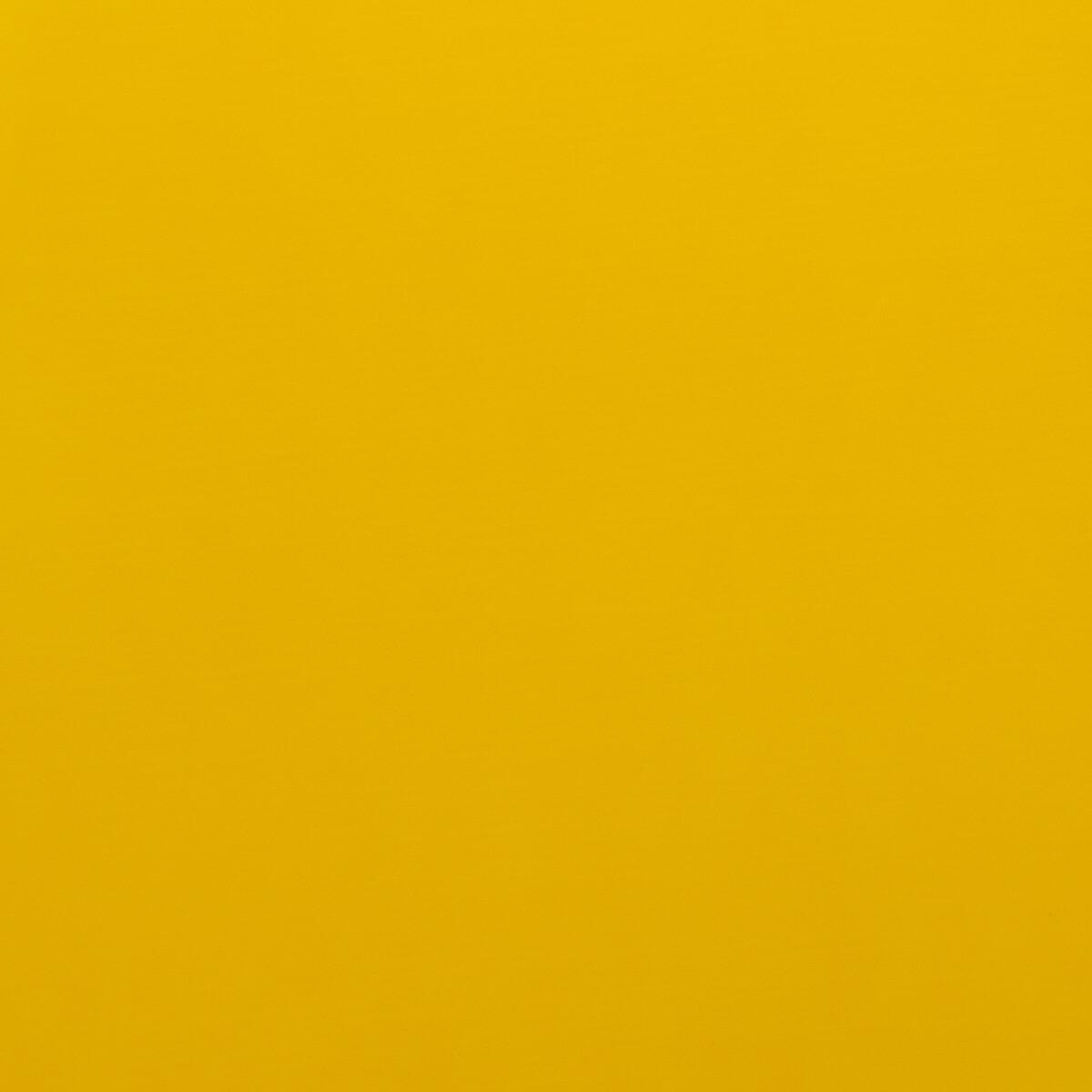 Golden Yellow Hotmark Revolution HTV - Large Roll