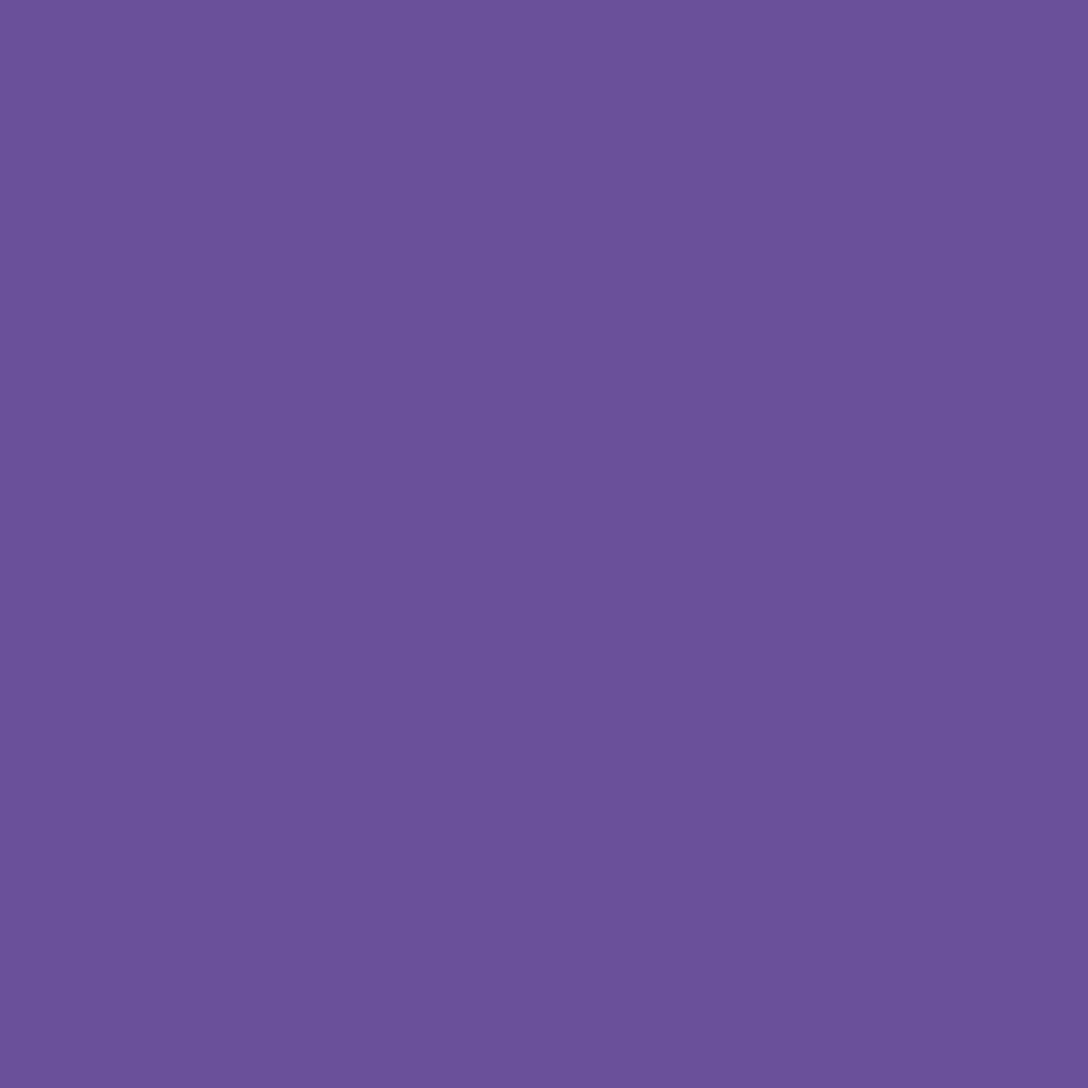 Gimme5 Orchid Purple HTV
