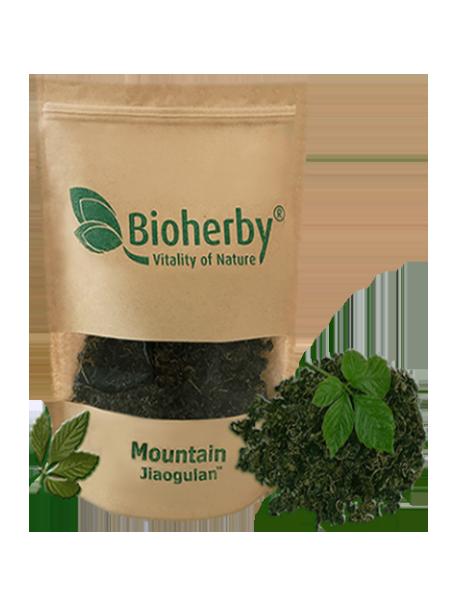 BIOHERBY® - Jiaogulan Tee Bio - 100G