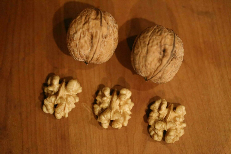Chaubert Walnut