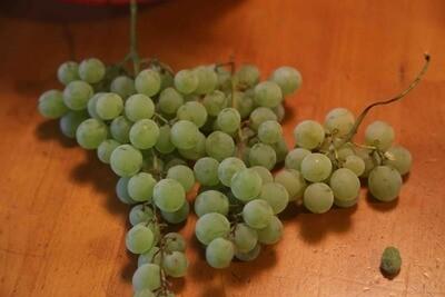 Crystal Grape