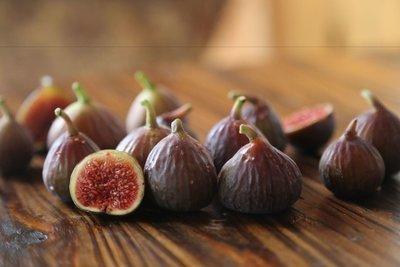 Japanese Fig