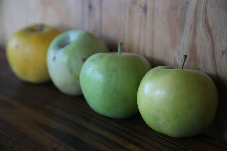 Northwest Greening Apple