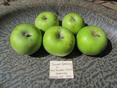 Sweet Greening Apple