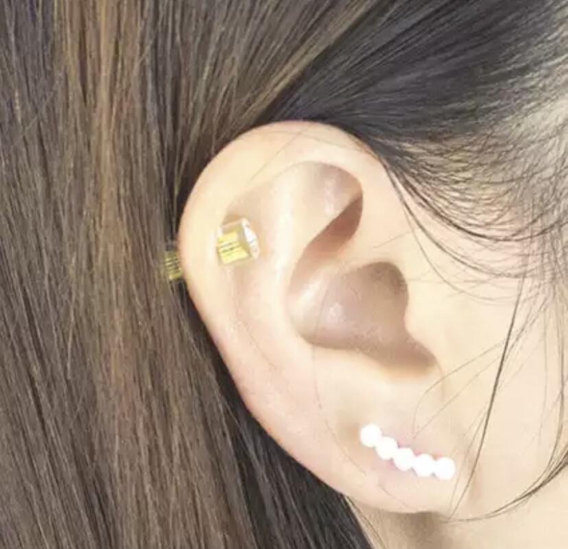 Climber Stud Earrings
