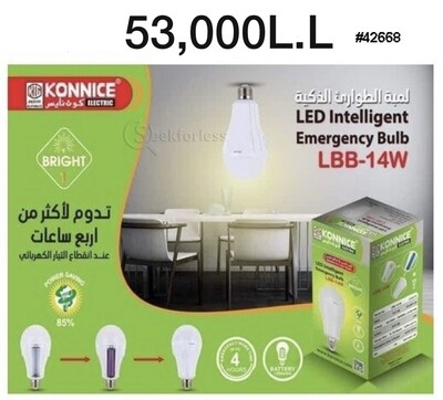 ​LED Intelligent Emergency Bulb