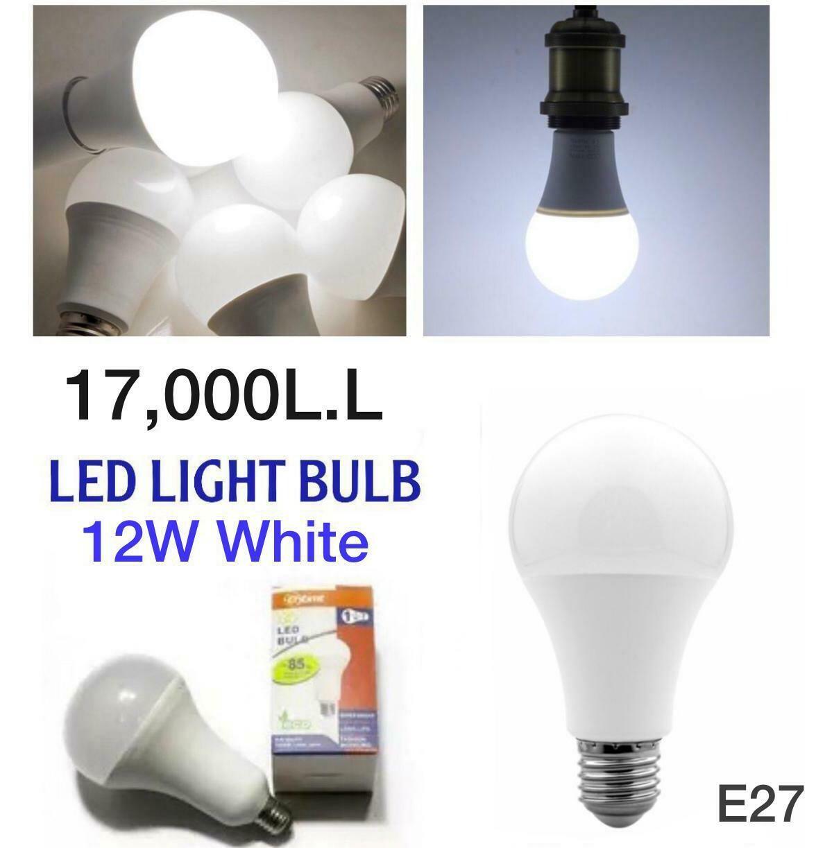 LED Bulb (white 12W)