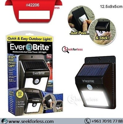 Everbrite Solar LED Light