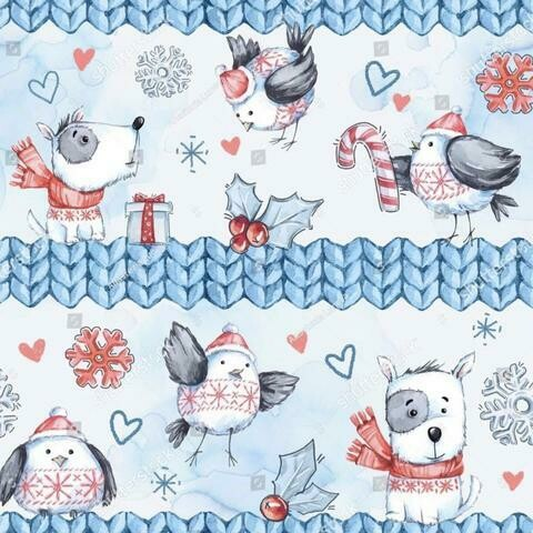 French Terry - Blue Dog Sweater