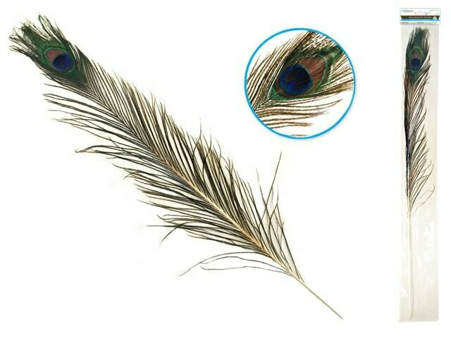 """Feather Craft: 31""""-35"""" Real Peacock Feather"""