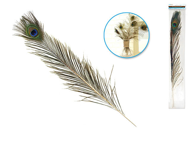 """Feather Craft: 25""""-30"""" Real Peacock Feather"""