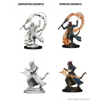 D&D Nolzur's Marvelous Miniatures - Tiefling Male Sorcerer