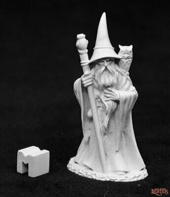 Anuminar Winterbeard, Wizard - Reaper Miniatures