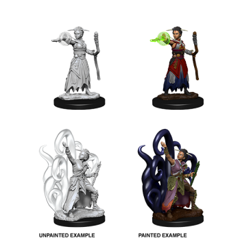 D&D Nolzur's Marvelous Miniatures - Female Human Warlock