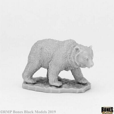 Cave Bear Bär - Bones - Reaper Miniatures