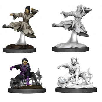 D&D Nolzur's Marvelous Miniatures - Female Human Monk