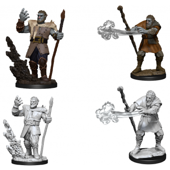 D&D Nolzur's Marvelous Miniatures - Male Firbolg Druid