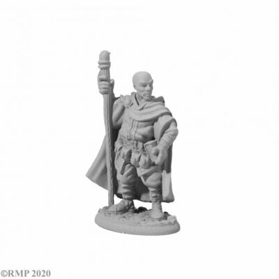 AMARI, ADVENTURING WIZARD - Dark Heaven Legends - Reaper Miniatures