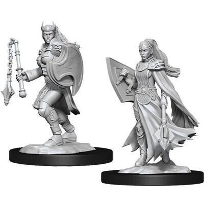 D&D Nolzur's Marvelous Miniatures - Kalashtar Cleric Female