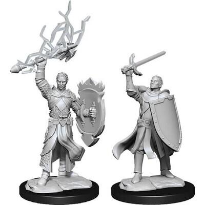 D&D Nolzur's Marvelous Miniatures - Half-Elf Paladin Male