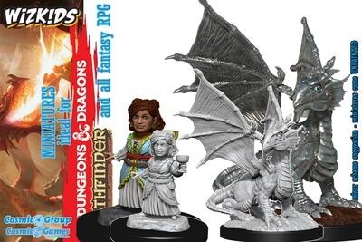 D&D Nolzur's Marvelous Miniatures - Silver Dragon Wyrmling & Halfling Dragon Friend