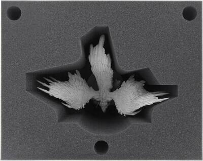FS01Set full-size zweiteilige Einlage für KDM 1.5 - Phoenix- Feldherr