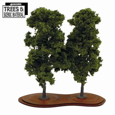 Mature Chestnut Trees (2x) Kastanienbaum - 4Ground