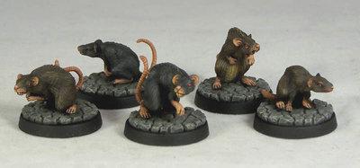 DV3a – Giant Rats (5) - Otherworld Miniatures