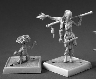Druid and Familiar - Pathfinder Miniatures - Reaper Miniatures