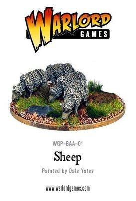 Sheep - Tiere - Schafe
