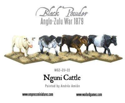 2 Nguni Cattle - Tiere - Rinder