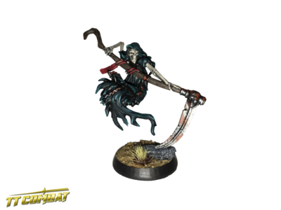 Wraith - Fantasy Heroes - TT