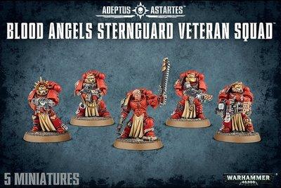 BLOOD ANGELS STERNGUARD VETERAN SQUAD - Warhammer 40.000 - Games Workshop