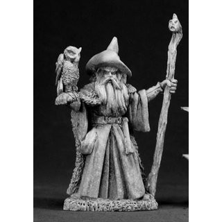 Amathor, Wizard w/Owl - Reaper Miniatures
