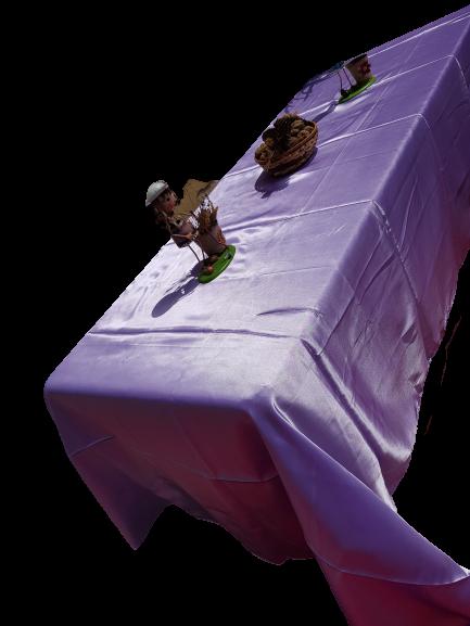 Fete pentru masa confectionate din satin