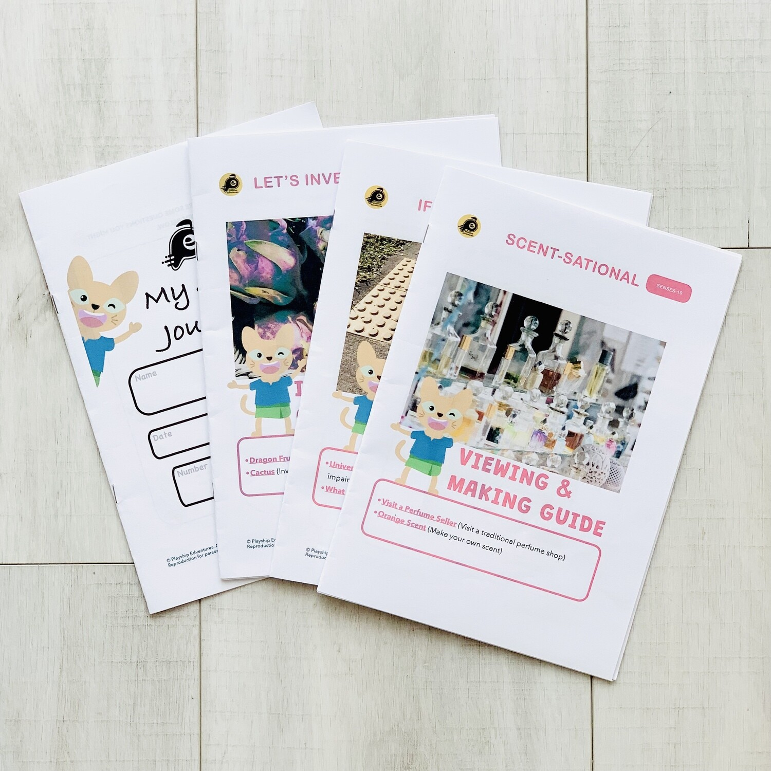 """""""Fruit Detective""""  Story Activity Kit (PRINTED)"""