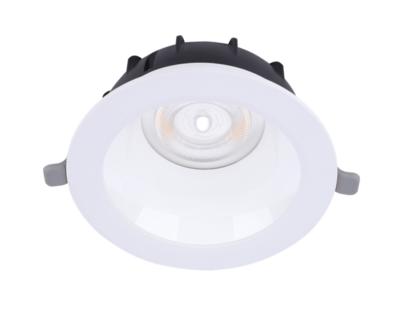 LED Downlight Performer MW