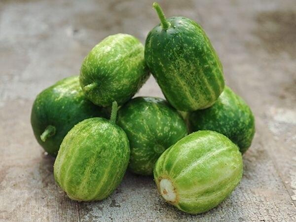 Green Apple Cucumbers