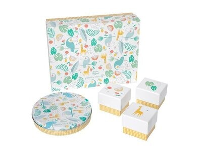 Baby Art Gift Box Limited Edition