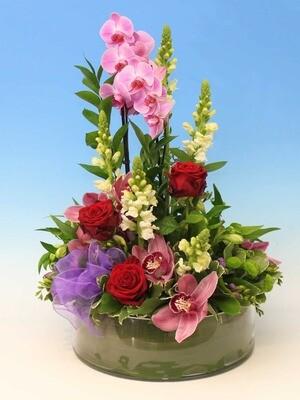 Plant and Flower Arrangement