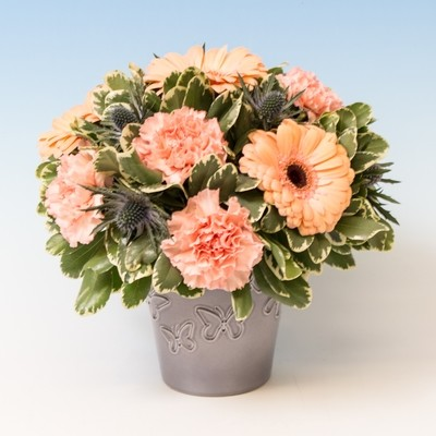 Gerbera and Carnation display