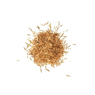 Grass seed Saatgut