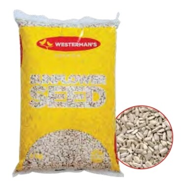 Westerman's White Sunflower Seeds