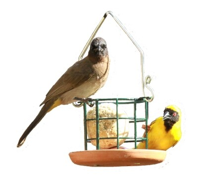 Elaine's Birding Bird Grub Suet Ball Holder